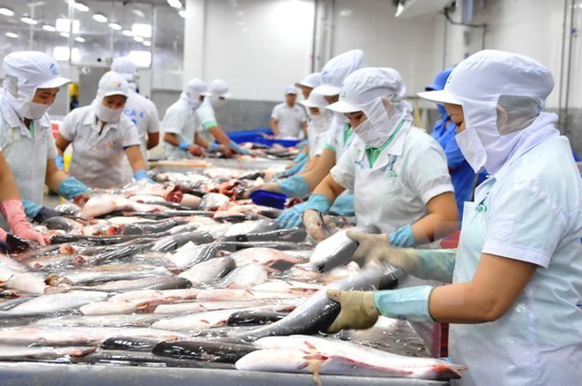 EVFTA - Cơ hội lớn giúp đa dạng hóa thị trường xuất khẩu - Ảnh 2.