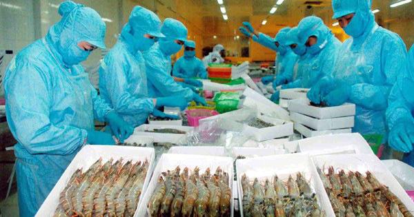 EVFTA có hiệu lực, tôm Việt vào EU tăng trưởng hai con số - Ảnh 1.
