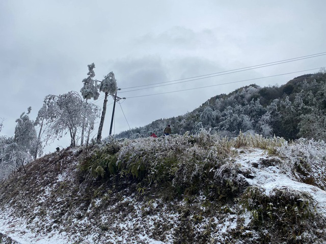 Rét đậm kéo dài gây thiệt hại lớn tại các tỉnh Tây Bắc - Ảnh 1.