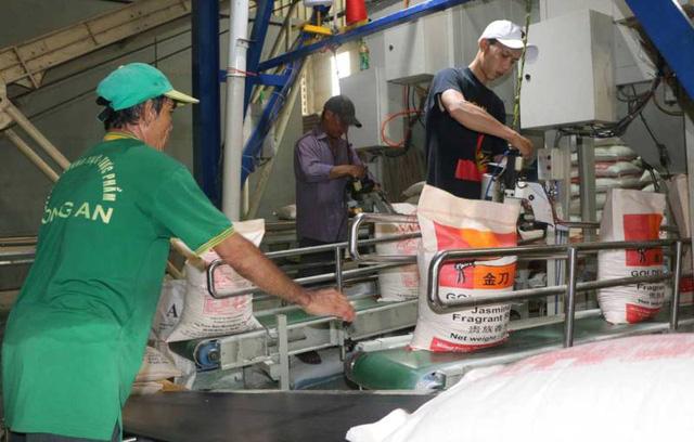 Xuất khẩu gạo giảm khối lượng, tăng chất lượng - Ảnh 1.