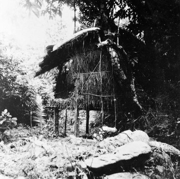 80 năm ngày Bác Hồ về nước: Niềm tin bất diệt của Chủ tịch Hồ Chí Minh - Ảnh 2.