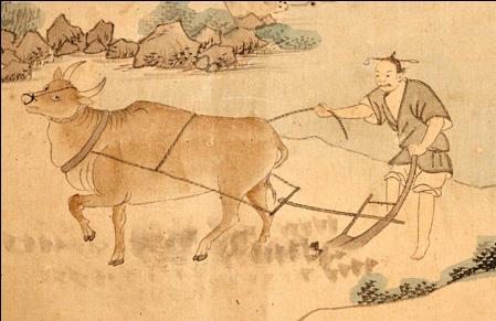 Hình tượng con trâu trong văn hóa Á Đông - Ảnh 2.