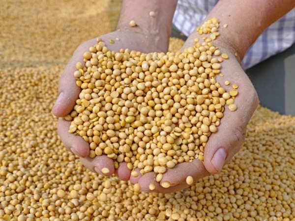 Giá nông sản thế giới tăng vọt, nhiều nước châu Âu bối rối - Ảnh 1.