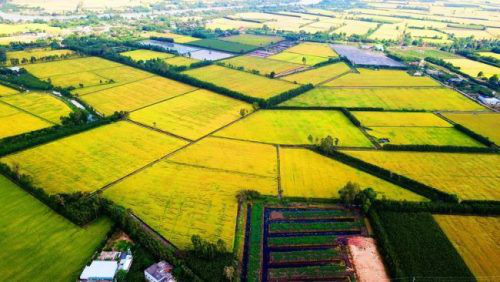 The Mekong Delta is home to 17 million people, serving as the largest agricultural production center within Viet Nam.