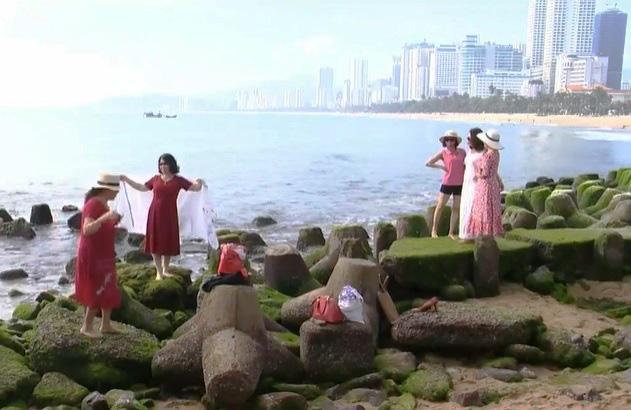 Mê mẩn thảm rêu xanh ấn tượng ở biển Nha Trang - Ảnh 4.