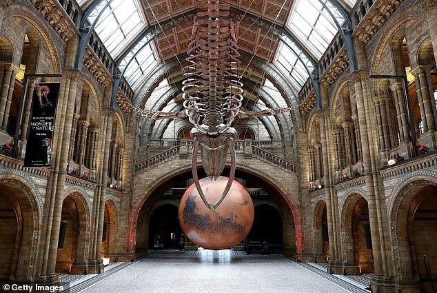 Ấn tượng, mô hình Sao Hỏa khổng lồ tại Bảo tàng Anh - ảnh 2