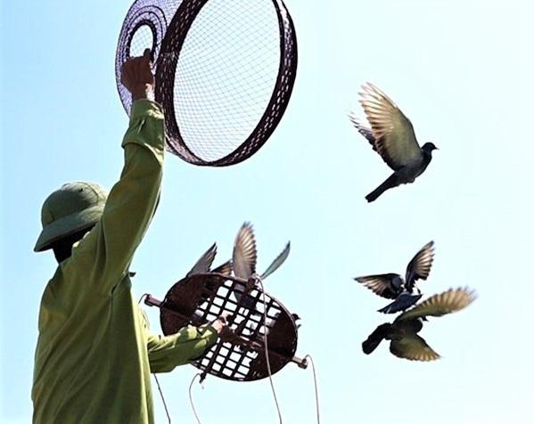 Tháng hành động vì môi trường suy nghĩ về thú chơi chim cảnh - Ảnh 4.