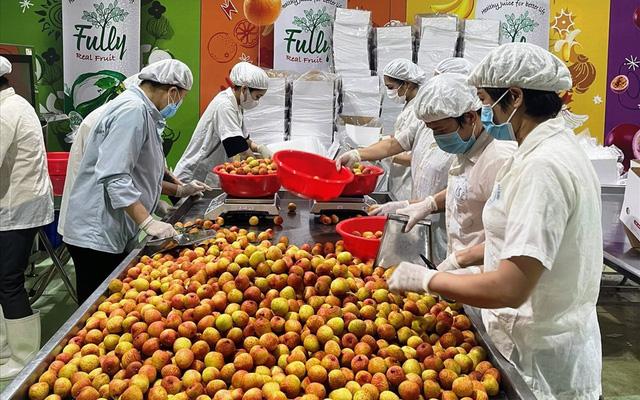 Giải pháp tiêu thụ 4 triệu tấn nông sản không bị ùn ứ - Ảnh 3.