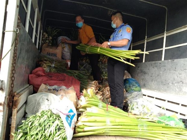 Lập trạm trung chuyển chợ đầu mối để gỡ vướng cho nông sản - Ảnh 1.
