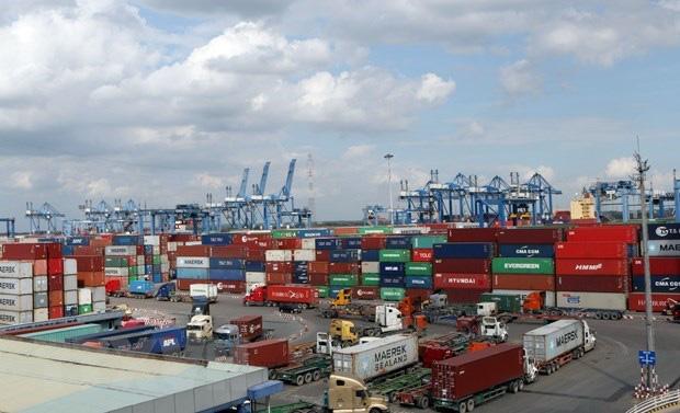 Đưa hàng nhập tồn trên 15 ngày khỏi cảng Cát Lái - Ảnh 1.