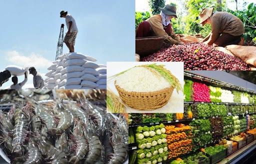 Thủ tướng Chính phủ chỉ đạo thúc đẩy sản xuất, lưu thông, xuất khẩu nông sản - Ảnh 1.