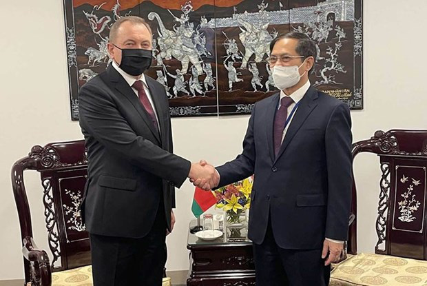 Minister of Foreign Affairs Bui Thanh Son (R) meets Belarusian FM Vladimir Makei (Photo: VNA)