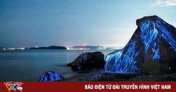 Những bờ biển phát quang ấn tượng vào ban đêm