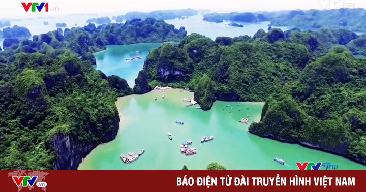VTVTrip: Ngao du sơn thủy hữu tình tại Vịnh Hạ Long