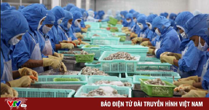 Оптовые цены на морепродукты (сырец) во Вьетнаме 17.08.18 – 23.08.18