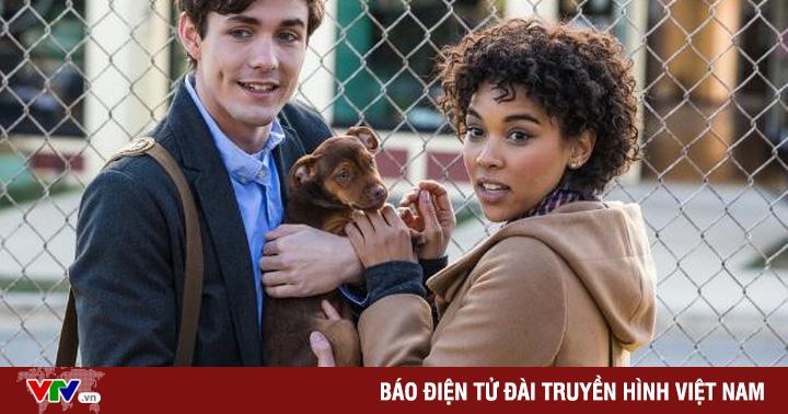 Những thú vui cưng muốn xỉu của chú cún Bella trong phim ''Đường về nhà của cún con''