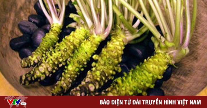 """Vì sao Wasabi """"thật"""" lại đắt đỏ và khan hiếm?"""