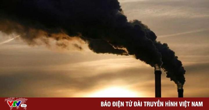 Cần thêm nhiều giải pháp đồng bộ để bù đắp lượng phát thải carbon