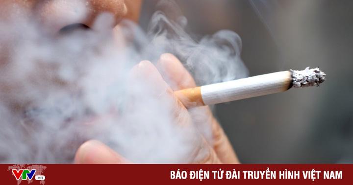 Không chỉ gây bệnh ở phổi, hút thuốc lá còn ảnh hưởng tim mạch, sinh sản