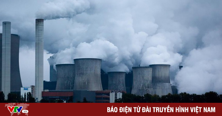 Mua bán khí carbon - Cú hích thúc đẩy bảo vệ rừng,...