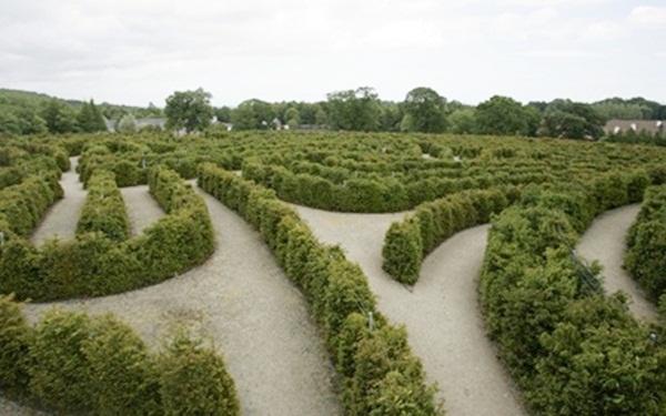 Mê cung hòa bình thuộc công viên Castewallan, Bắc Ireland.