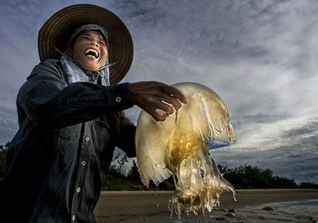 Niềm vui (đời sống) - Hà Văn Đông - giải 3