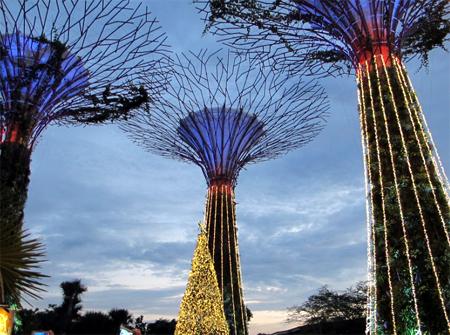 Singapore Giáng sinh này…