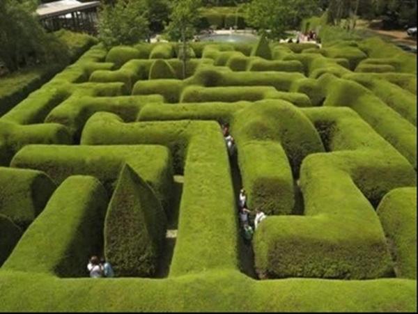 Mê cung lâu đời nhất nước Anh - Minotaur.