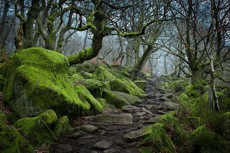 Hẻm núi Padley, Peak District, Anh.