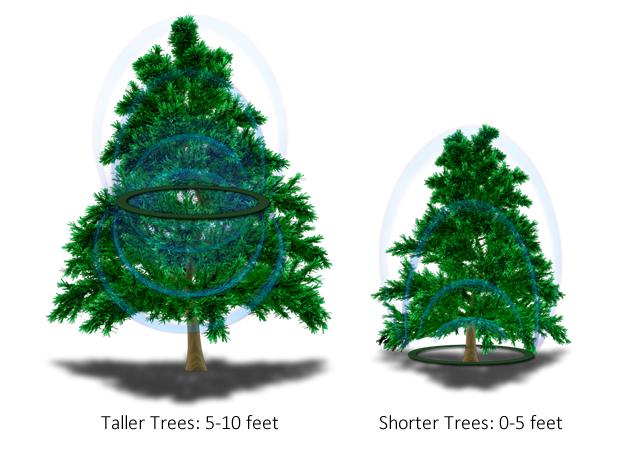 Cách bố trí vòng năng lượng trên cây thông Noel