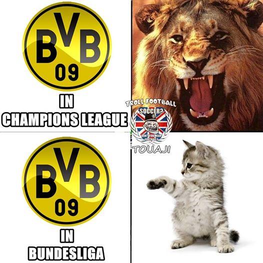 """Dortmund ở Champions League cứ như """"hổ vồ"""", còn tại Bundesliga lại mềm yếu như một chú mèo con."""
