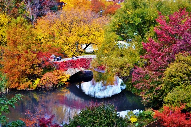 Cây cầu Gapstow, Công viên Trung tâm, New York, Mỹ