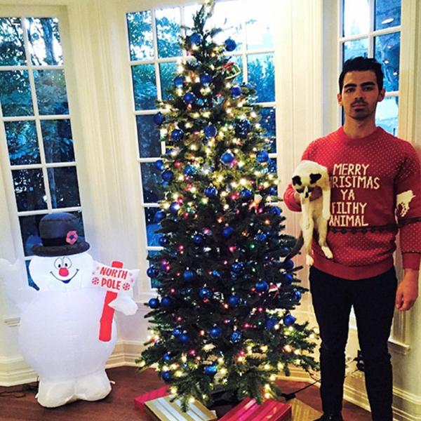 Joe Jonas đón Giáng sinh ở nhà với chú mèo cưng. Từng có quan hệ tình cảm với các sao trẻ đình đám như Taylor Swift, Demi Lovato, năm nay, chàng ca sỹ cựu thành viên Jonas Brothers lại quyết định có một Giáng sinh ấm áp bên gia đình.