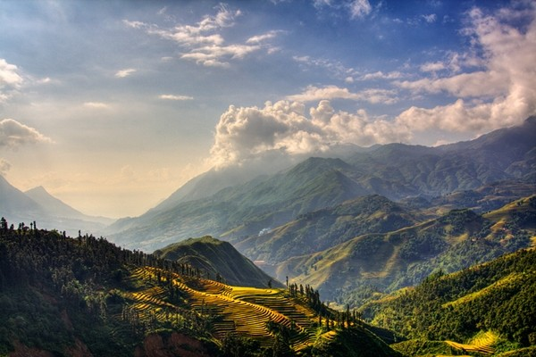 Ruộng bậc thang của Sa Pa đã tồn tạo suốt hàng trăm năm, được tạo nên từ đôi bàn tay lao động cần cù của những người dân tộc Dao, HMông, Hà Nhì sống trong khắp các thung lũng. (Nguồn: news.zing)