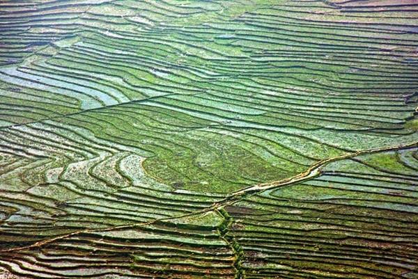 Vẻ đẹp của các thửa ruộng bậc thang đã khiến Sa Pa trở thành điểm đến rất thu hút khách du lịch, đặc biệt là những người đam mê nhiếp ảnh. (Nguồn: news.zing)