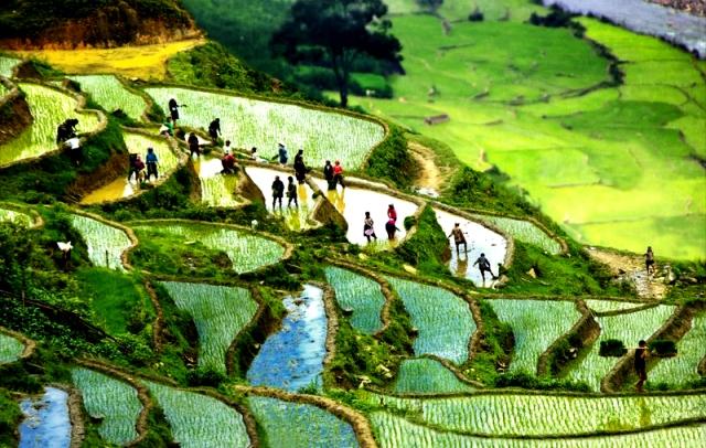 Phong cảnh thiên nhiên tuyệt đẹp và văn hóa truyền thống là những yếu tố giúp Sa Pa trở thành một trong những điểm đến yêu thích của du khách nước ngoài.