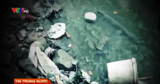 Hồ Tây đang ngày ngày bị ô nhiễm nhiễm nghiêm trọng.