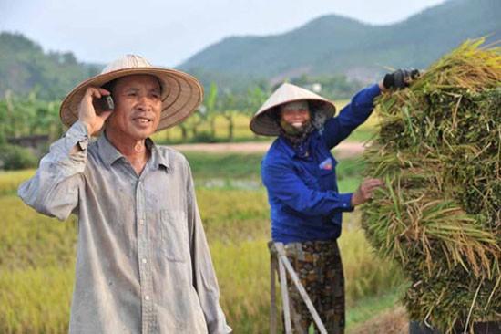 Di động là cách tiếp cận hiệu quả với khách hàng nông thôn.