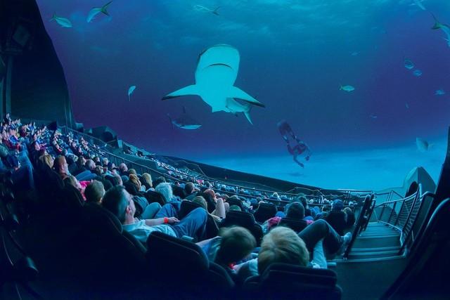 Công nghệ IMAX đã có rất nhiều cải tiến mới giúp nâng cao trải nghiệm người xem