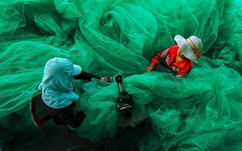 Giải thưởng Lớn: Ảnh chụp hai người phụ nữ đang may lưới trong khi chồng họ đi đánh cá, do Phạm Tỵ chụp ở vịnh Vĩnh Hy, Ninh Thuận vào tháng 5/2012, bằng máy Nikon D300. Hai nhân vật như chìm trong chiếc lưới đánh cá, công cụ mưu sinh của họ,đó là vẻ đẹp của bức ảnh.