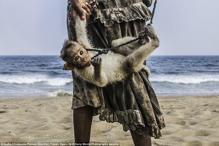 Người ăn mày và chú khỉ con trên bãi biển Chennai, Ấn Độ. (Ảnh: Loulia Chvetsova)
