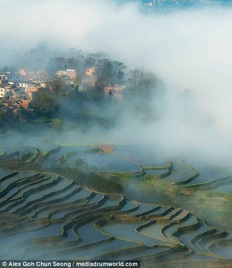Những thửa ruộng bậc thang ẩn mình trong màn sương mù.