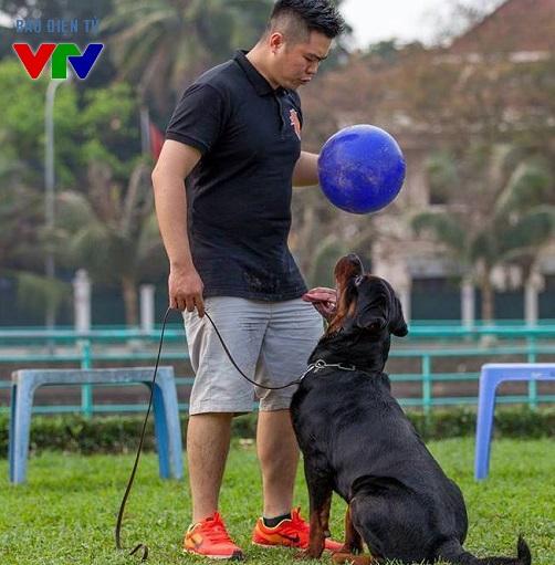 Cuộc thi Dogshow do CLB Rottweiler miền Bắc tổ chức nhằm đưa đến cho công chúng hình ảnh những chú chó nghiệp vụ khỏe mạnh, thân thiện và đẹp.