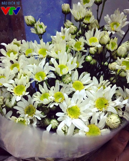 Tranh thủ những ngày hoa đang rộ, người dân Thủ đô thường mua từng bó nhỏ để trang trí trong nhà hay tặng nhau.