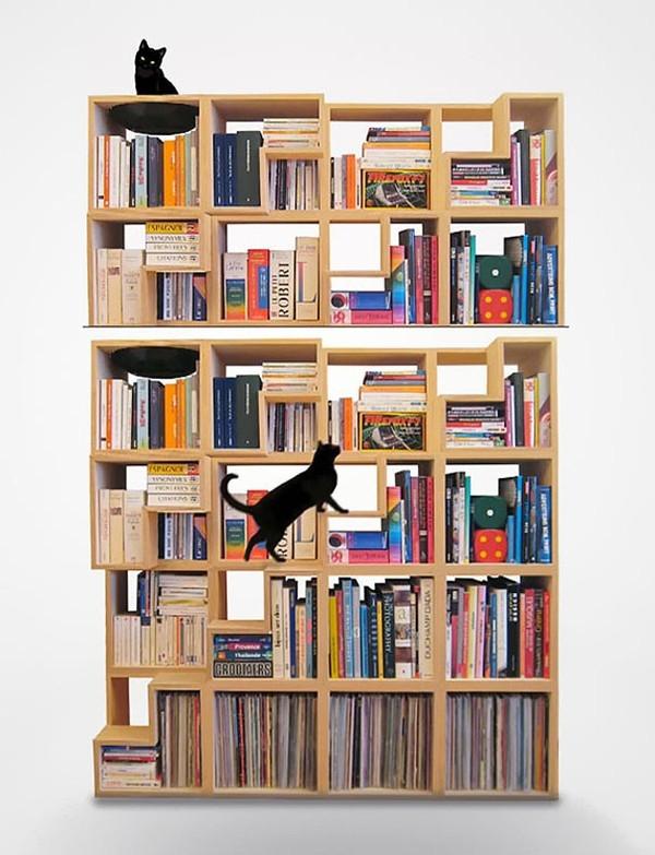 Giá sách được bố trí thêm bậc thang, nơi những chú mèo có thể leo trèo thỏa thích