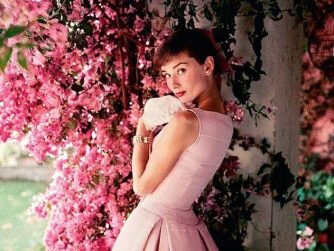 Audrey Hepburn trên trang bìa tạp chí American Vogue phát hành hồi năm 1955