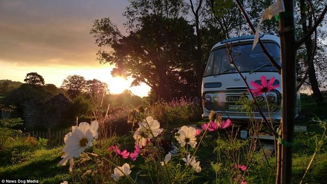 Không gian vườn lãng mạn xung quanh xe buýt