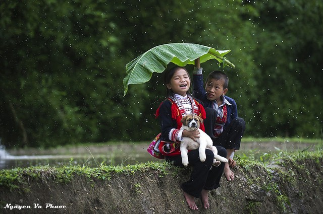 Lá làm ô. Nụ cười của những em bé người Dao đỏ