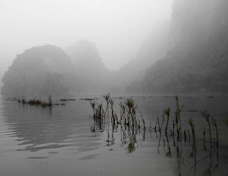 Sông Ngô Đồng ngày mờ sương. (Ảnh: Laurie Hester)