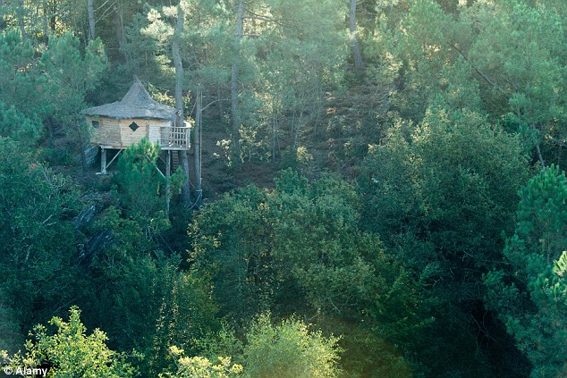 Ngôi nhà trên cây Le Pertuis du Rofo nằm ở Brittany nước Pháp có hình bán nguyệt nằm lơ lửng trên ngọn cây.